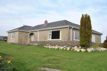 4 bed Bungalow in Whitland  CARMARTHENSHIRE