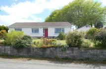 Detached Bungalow for sale in Llanllwni ...