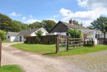 3 bed Detached Bungalow in Maesybont CARMARTHENSHIRE