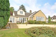 3 bed Bungalow for sale in Gloucester Road...