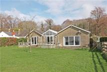 Bungalow for sale in Cranham, Gloucester...