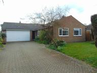 4 bedroom Detached Bungalow to rent in Jacks Lane, Takeley...
