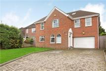 7 bedroom Detached home in Halland Way, Northwood...