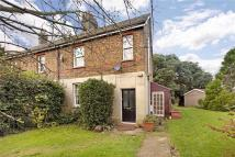 3 bed semi detached house to rent in Stag Lane, Chorleywood...