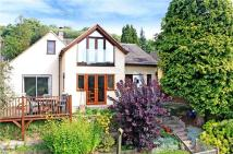 4 bedroom Bungalow for sale in Thrupp Lane, Thrupp...