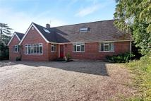 Detached Bungalow for sale in Warfield Street...