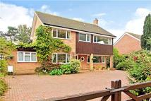 5 bedroom Detached property for sale in Sandown Park...