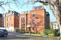 Flat for sale in Chelmsford Court...