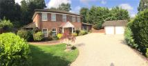 Detached house for sale in Audleigh Place, Chigwell...
