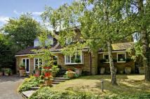 4 bed Detached house for sale in Mott Street, Loughton...