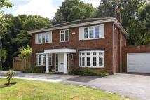 5 bedroom Detached house in Cedar Close, London, SW15