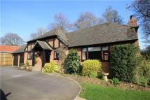 4 bed Bungalow for sale in Windsor Road, Medstead...