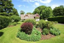 Detached house for sale in Lymington Bottom Road...