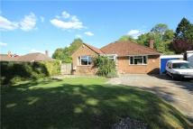 Bungalow for sale in Ashdell Road, Alton...