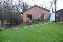 Detached Bungalow for sale in Carfield Lane
