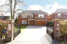 6 bedroom new house for sale in Penington Road...