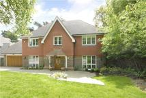 One Tree Lane Detached house for sale
