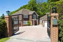 7 bedroom Detached property in Wallingford Gardens...