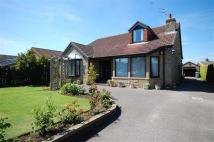 Detached Bungalow for sale in Carrfield Road...
