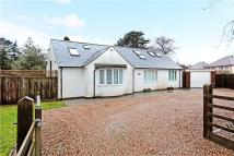 3 bed Bungalow in Hillbury Road...