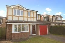 4 bedroom Detached property in Butcher Close, Milton...
