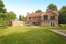 6 bedroom Detached house for sale in Ockley Road, Beare Green...