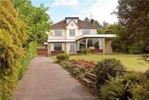 Deepdene Drive Detached property for sale