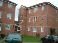 Studio apartment to rent in Lesney Gardens, Rochford...