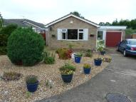Detached Bungalow for sale in Hawthorn Close...