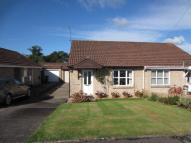 Semi-Detached Bungalow for sale in Coed Arhyd The Drope...