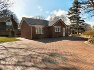 2 bedroom Bungalow in West Boldon