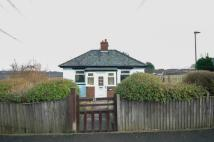 Bungalow for sale in Gladstone Terrace...