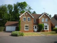 property to rent in Cambium Close, Kettering...