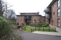 Apartment to rent in Adderstone Crescent...