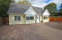 Bungalow in Palmers Close, Codsall...