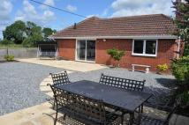 Detached Bungalow in Cullompton