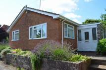 Detached Bungalow for sale in Cullompton