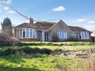3 bed Detached Bungalow for sale in BEER, Seaton, Devon