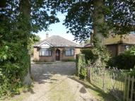 Detached Bungalow for sale in Rollestone Road, Holbury...