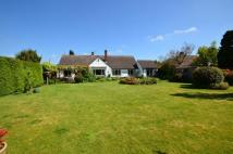 4 bed Detached Bungalow in Mayfair, Tiverton