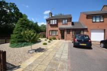 3 bedroom semi detached property for sale in Tiverton - Bluebell...