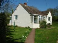 Detached Bungalow in Cheriton Fitzpaine