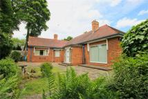 Detached Bungalow in Newland Park, Hull...