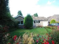 3 bed Bungalow to rent in Melville Avenue...