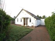 Bungalow to rent in Cyncoed Road, Cyncoed...