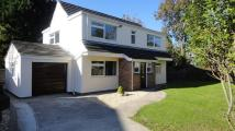 house to rent in Pen Y Bryn Road, Cyncoed...