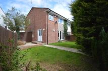3 bed house to rent in Bryn Pinwydden, Pentwyn...