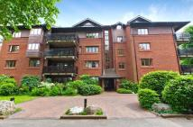 Flat to rent in Stanhope House...