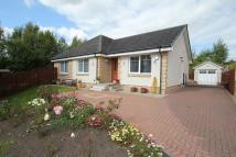 Detached Bungalow for sale in Doo'cot Hill, Sauchie...
