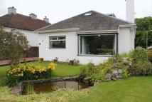 Detached Bungalow for sale in Alexandra Drive, Alloa